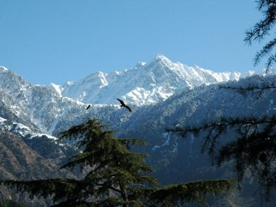 Himachal Pradesh 11 Nights and 12 Days